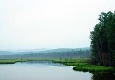 Mañana brumosa en el lago Mañana del comienzo del verano lluvia de llovizna fotografía de archivo