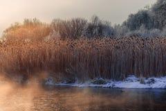 mañana brumosa escarchada en el río Fotos de archivo libres de regalías