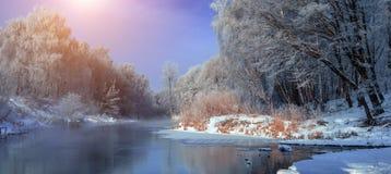 Mañana brumosa escarchada en el rive Fotos de archivo