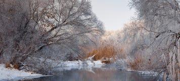 Mañana brumosa escarchada en el rive Fotografía de archivo