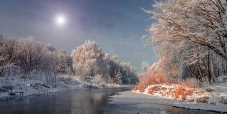 Mañana brumosa escarchada en el rive Foto de archivo libre de regalías
