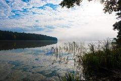 Mañana brumosa hermosa en un lago Imagenes de archivo