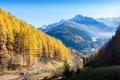 Mañana colorida del otoño en la montaña de las montañas Fotografía de archivo libre de regalías