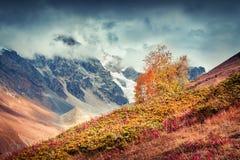 Mañana colorida del otoño en las montañas del Cáucaso Imagen de archivo libre de regalías
