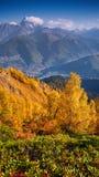 Mañana colorida del otoño en las montañas del Cáucaso Imágenes de archivo libres de regalías