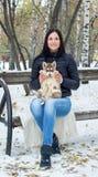 Mañana congelada soleada de la mujer joven gozada de moda que juega con el perro fornido en la nieve al aire libre Momentos preci Imágenes de archivo libres de regalías