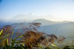 Mañana de Annapurna Imágenes de archivo libres de regalías