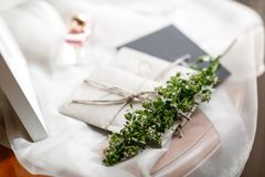 Mañana de la boda Detalles nupciales ciérrese encima de los accesorios de la mujer de la visión Imagen de archivo libre de regalías