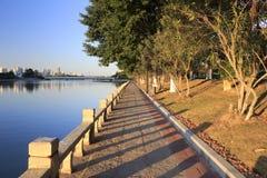 Mañana de la orilla del lago imagenes de archivo
