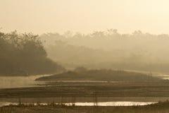 Mañana de la orilla en la selva del nepali, Nepal imágenes de archivo libres de regalías