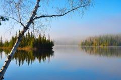 Mañana de la primavera en el lago fotos de archivo