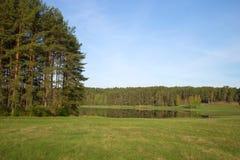 Mañana de mayo en el lago Malenets Mikhailovskoe, Pushkinskie sangriento, Rusia Imagen de archivo