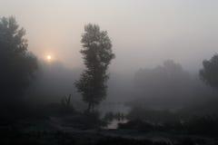 Mañana de niebla 1 Imagen de archivo