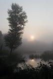 Mañana de niebla 1 Imagen de archivo libre de regalías
