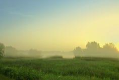 Mañana de niebla Foto de archivo