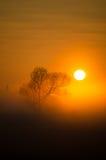 Mañana de niebla Imagen de archivo libre de regalías