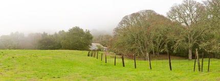 Mañana de niebla, cercas del rancho y robles panorámicos Imagen de archivo