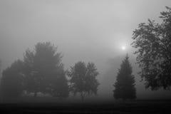 Mañana de niebla de la caída Foto de archivo libre de regalías