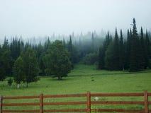 Mañana de niebla del verano en el pueblo de montaña Foto de archivo