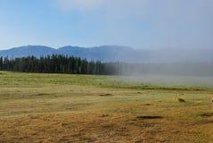 Mañana de niebla en las montañas Altai-Siberia fotografía de archivo