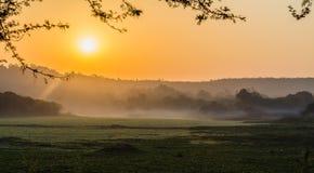 Mañana de niebla sobre el lago Fotografía de archivo libre de regalías