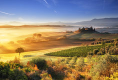 Mañana de Toscana Fotos de archivo