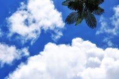 Mañana del cielo Fotografía de archivo