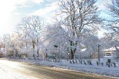 Mañana del invierno fotografía de archivo libre de regalías