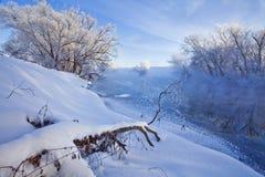 Mañana del invierno Foto de archivo