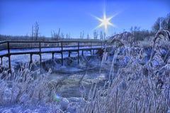 Mañana del invierno Fotografía de archivo