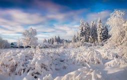 Mañana del invierno en el pueblo cárpato Mañana asoleada del invierno Imágenes de archivo libres de regalías