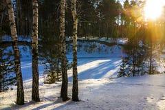 Mañana del invierno en el río siberiano Imágenes de archivo libres de regalías