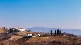 Mañana del invierno en los viñedos de Collio, Italia Imagenes de archivo