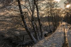 Mañana del invierno en Teufelsmoor cerca de Bremen Alemania imagenes de archivo