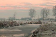 Mañana del invierno en Teufelsmoor cerca de Bremen Alemania imagen de archivo