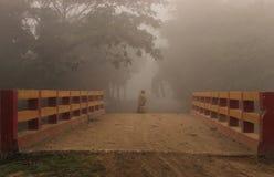 Mañana del invierno en zona rural Foto de archivo libre de regalías