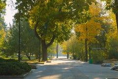 Mañana del otoño en el parque Foto de archivo libre de regalías