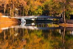 Mañana del otoño en un parque Imagen de archivo libre de regalías
