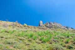 Mañana del resorte en montañas. Fotografía de archivo