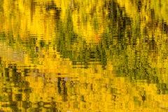 Mañana en Belces marrón Aspen CO Fotografía de archivo
