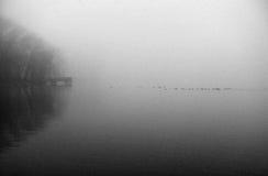 Mañana en el lago Imagenes de archivo