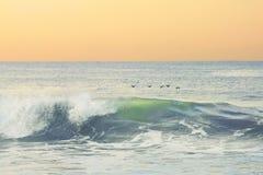 Mañana en el océano Fotografía de archivo libre de regalías