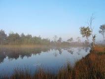 Mañana en el pantano, Lituania Foto de archivo