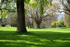 Mañana en el parque Zurich, Suiza Imagen de archivo
