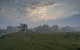 Mañana en el río cerca de la ciudad de Rogachev fotografía de archivo libre de regalías