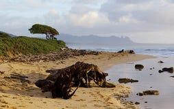 Mañana en Kauai Foto de archivo libre de regalías