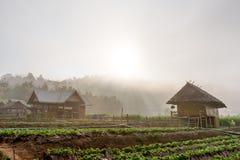 Mañana en la granja Fotografía de archivo libre de regalías
