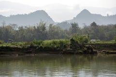 Mañana en la orilla del río imagen de archivo