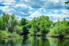 Mañana en la orilla del río en el parque Fotografía de archivo