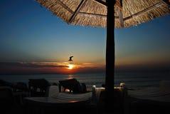 Mañana en la playa Imágenes de archivo libres de regalías